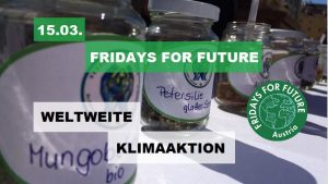 FridaysForFuture - Saatgutfest @ Villach | Villach | Kärnten | Österreich
