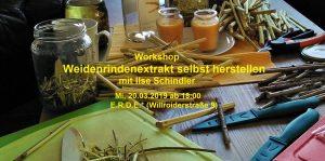 Workshop: Weidenrindenextrakt selbst herstellen @ E.R.D.E.*