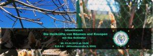 Die Heilkräfte von Knospen und Bäumen - Workshop @ E.R.D.E.*